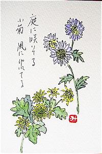 Dsc08028_2